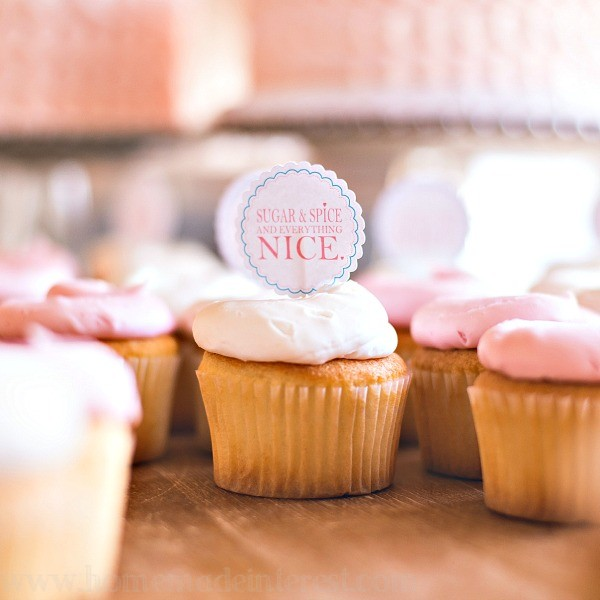 Shabby Chic Birthday Party {www.homemadeinterest.com}