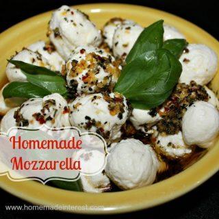 Homemade Mozzarella {www.homemadeinterest.com}
