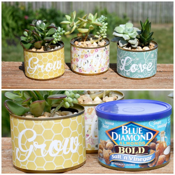 Upcycle Cans to Planters {www.homemadeinterest.com}