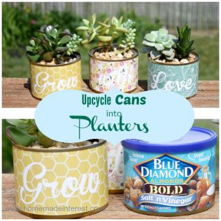 Upcycle Cans into Planters for your succulents with a few easy steps! This is an easy craft or DIY project for your home, or a fun summer activity for the kids