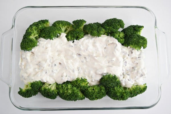 Broccoli Casserole with broccoli spears topped by cream of mushroom and sour cream mixture.