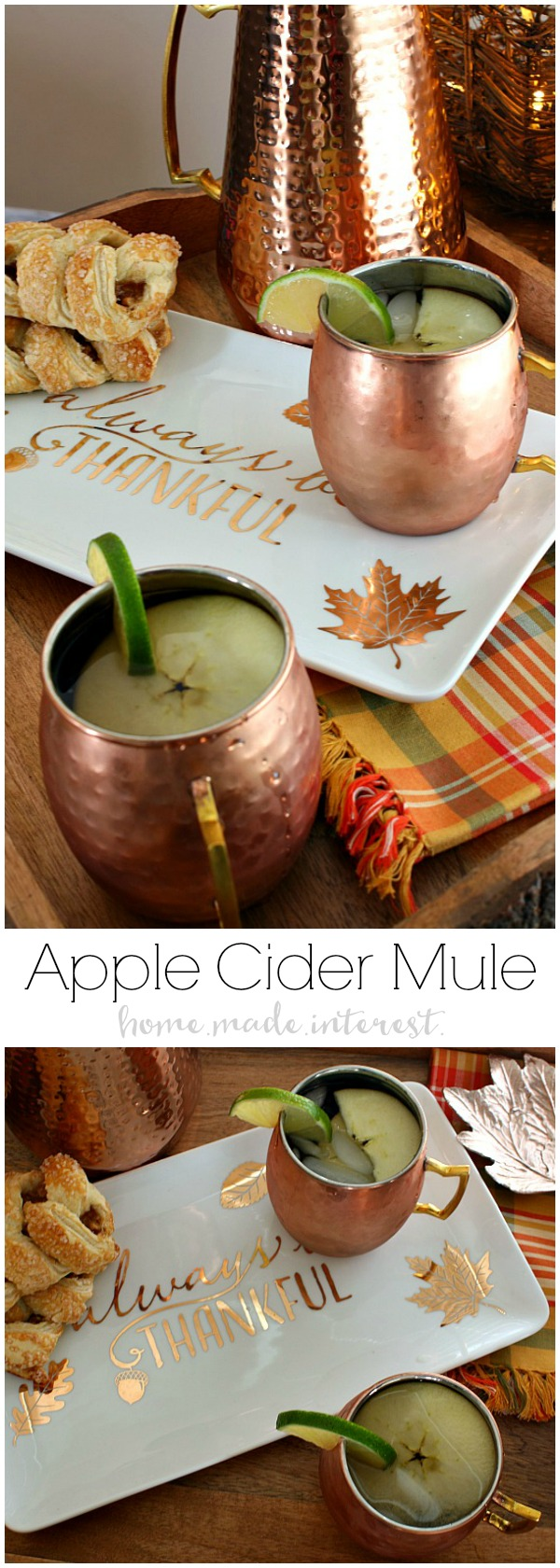 This Apple Cider Mule is going to be your favorite fall drink recipe! Apple Cider, vodka and ginger beer combined to make a fall flavored moscow mule. Need a Halloween party drink? Your friends are going to love this!