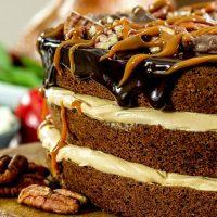 Turtle Brownie Cake