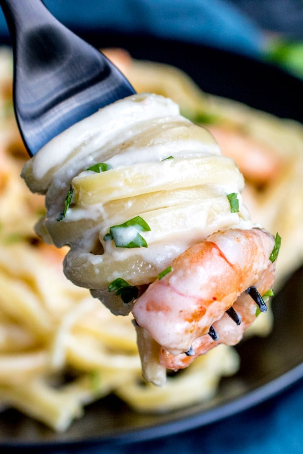 easy creamy Shrimp Alfredo