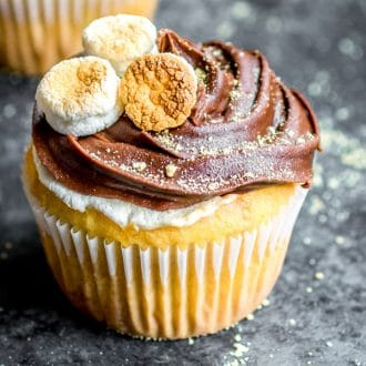 S'mores Cupcake with chocolate frosting and marshmallows