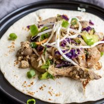 open face Low Carb Moo Shu Pork tortilla
