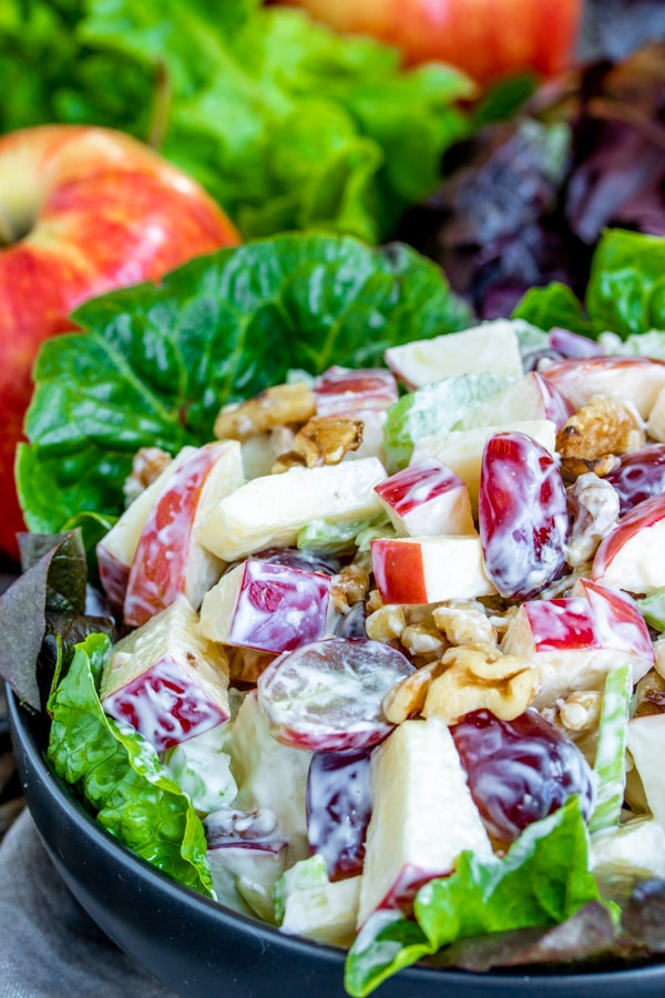 classic Waldorf Salad made with apples perfect for a picnic